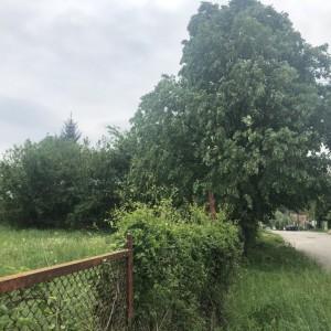 Парцел в с. Поповци (Габрово)